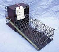 Patent Model Rat / Mouse Trap